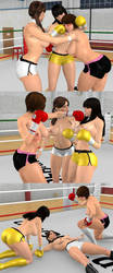 The referee gets KO!? by danisan9502