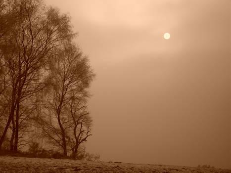 cold sunny winter