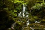 Dickson Falls Main Waterfall