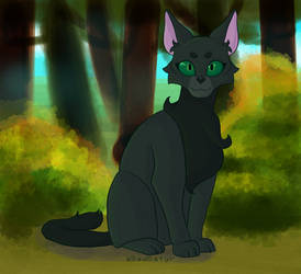Hollyleaf in the Forest
