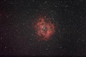 Rosette nebula NGC2239
