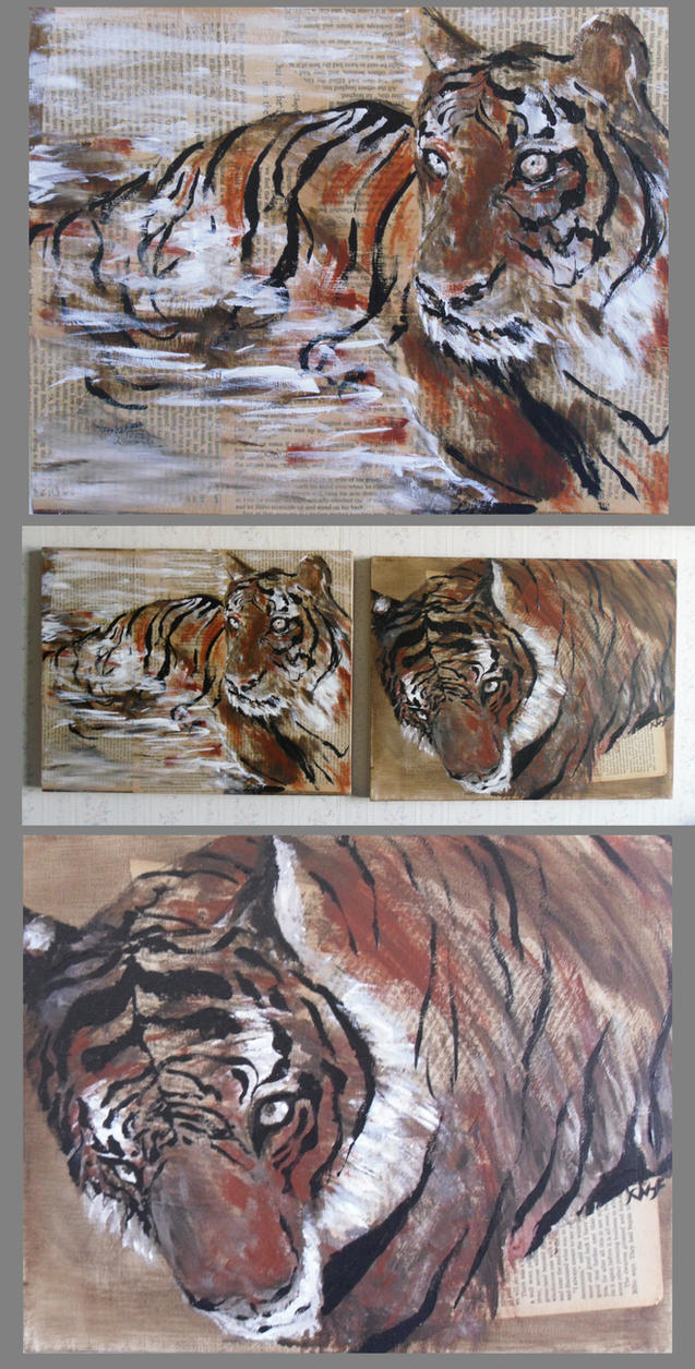 Tiger Watch by Fusco2010
