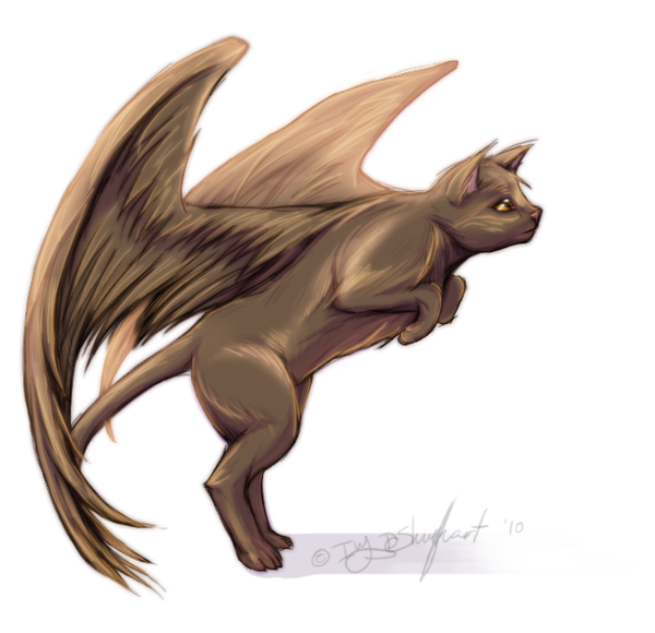 Game Flying Cat Dragon And Boy