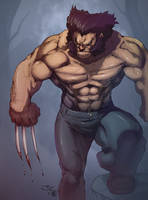 another Wolverine by JHK by eL-HiNO