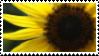 STAMP: Proud Yellow 2 by djRimzi