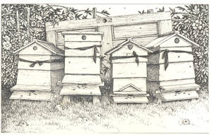 hives by maryanne42
