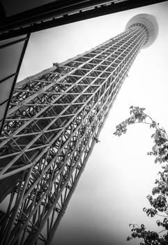 Rain falls on Tokyo Skytree