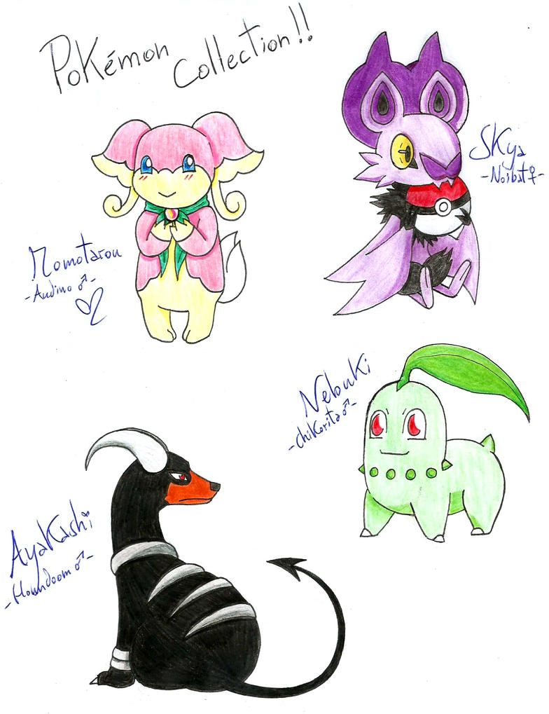 Pokemon Collection by Hitomi-chan666