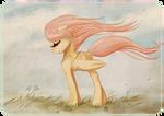 Flutterwind
