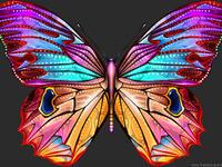 Butterfly_Destiny by inventivedreams