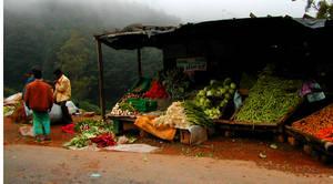 road side market