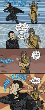 Skyrim: Fun With Guards