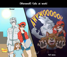 -Werewolf- Cells at Work! by LuCIoos