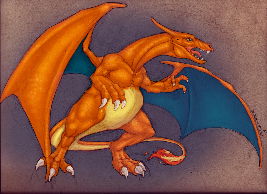 Charizard by toshema