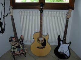 Guitars by B3RG3R