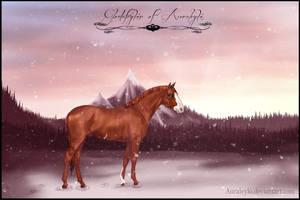Sunset Snow Scene by Auraleyki