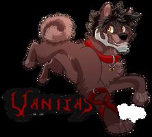 Vanitas Shiba by BosleyBoz