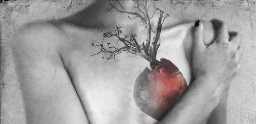 Sick Heart by carmillaxxx