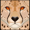 cheetah-face by QueenMargo