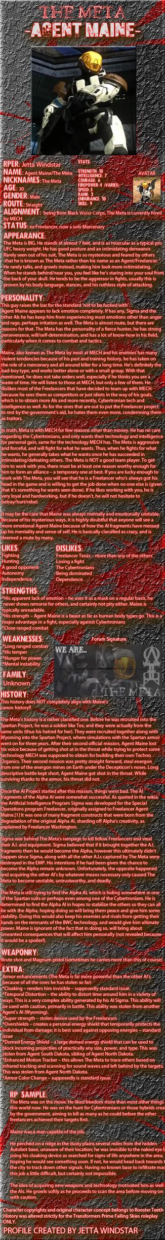 Agent Maine Image Bio by Jetta-Windstar