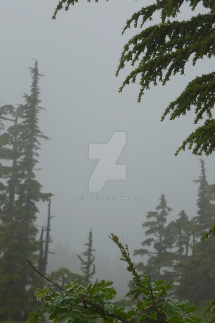 Overcast weather by Jetta-Windstar