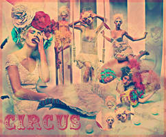 Circus by BreeBearx3