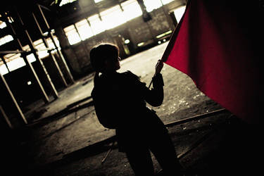 Raise the Red Flag by garion
