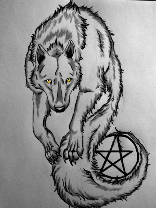 wolf with pentagram tattoo by silencer171 on deviantart. Black Bedroom Furniture Sets. Home Design Ideas