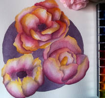 Pink and Yellow Roses - Watercolor Painting by Saphir-And-Rose