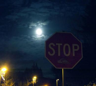 Night of the Full Moon by Joran-Antilles