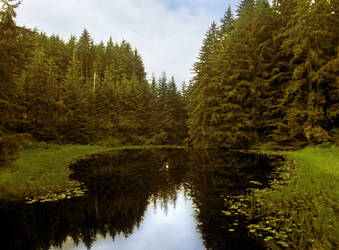 The Lake's Pond by Joran-Antilles