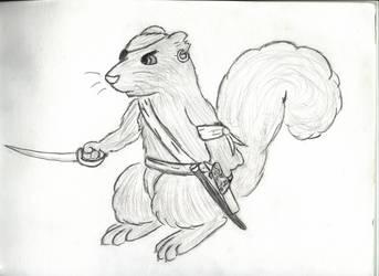 Pirate Squirrel