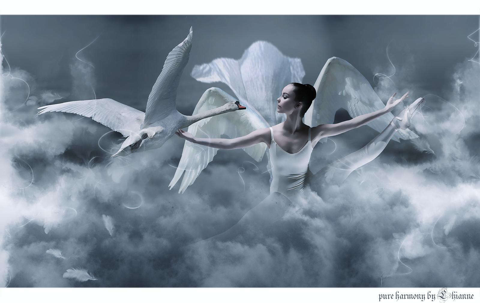 pure harmony by Lhianne