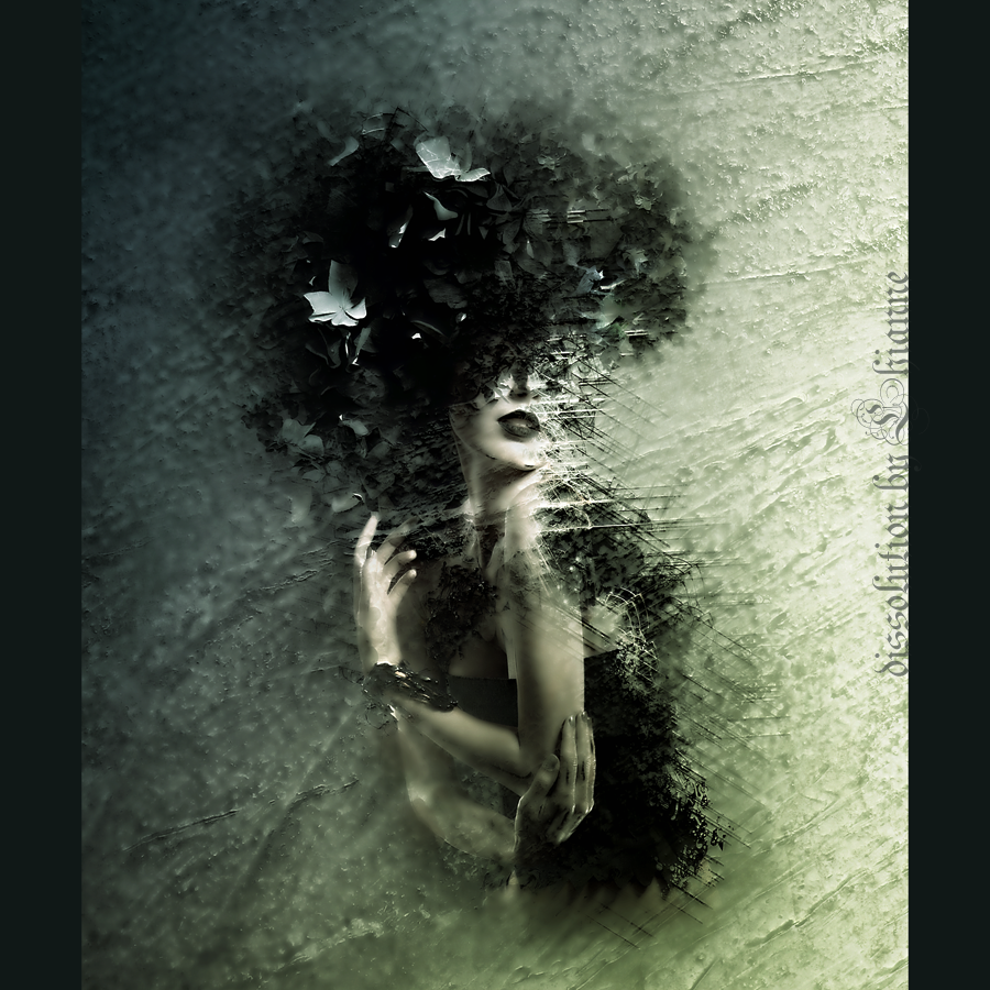 Dissolution by Lhianne