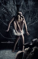 Raven Nest by Lhianne