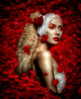 red roses by Lhianne
