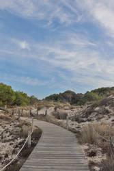 beach path 2.