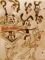 Animaniacs doodles