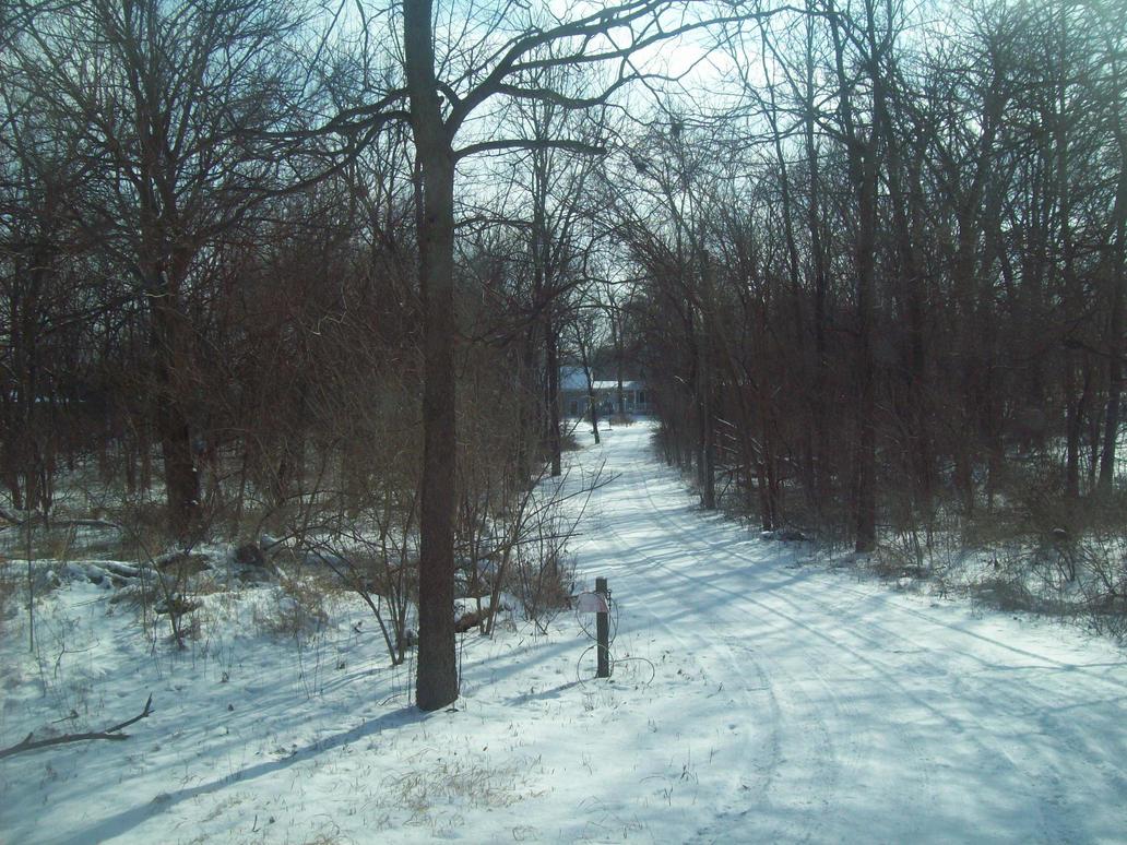 snow path by BruceBannerFanGirl