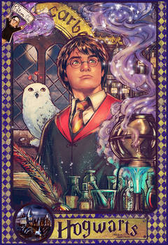 Harry Potter pinup (year 2)