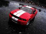 AUTOart Shelby GT500 -3