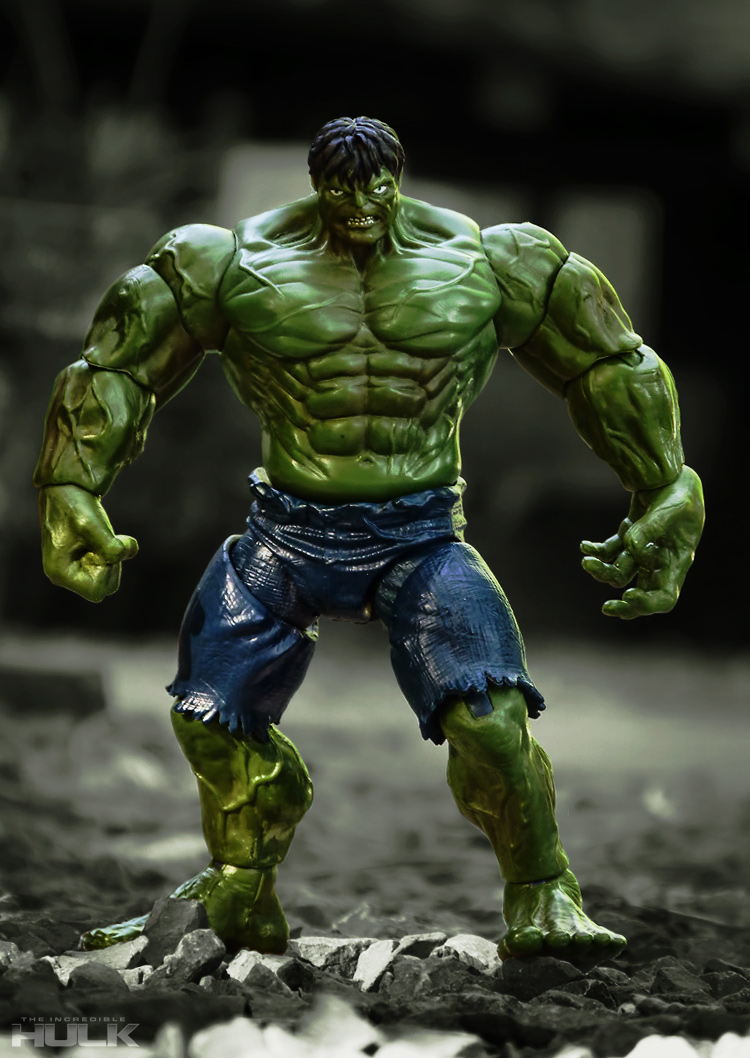 The Incredible Hulk - 2008 Movie Figure by FordGT