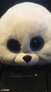 yoshi500's Profile Picture