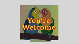 Parrots-thank-you