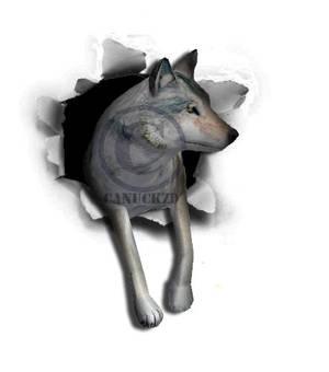 Wolfquest Wolf Burst