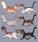 Adopts 7 CLOSED