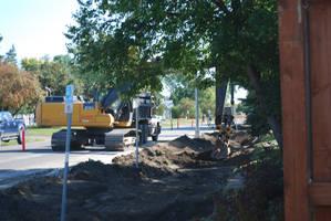Deere is Digging by KalikaMarie