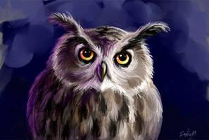 owl by Sophia-M