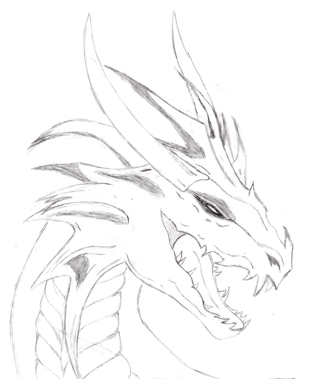 Drawings Of Ice Dragons Head