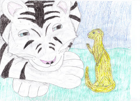Tiger and Ferret